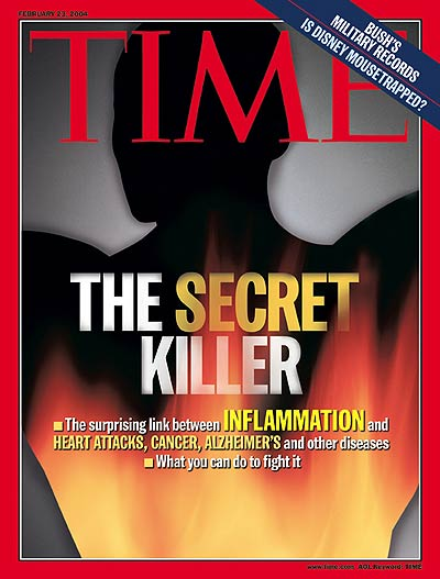 time-magazine-cover-feb-2004